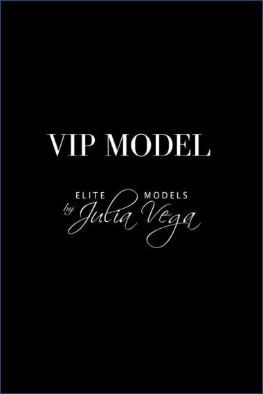 imagen modelo VIP